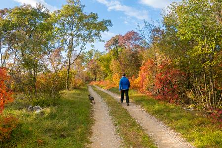 autumn colouring: Idyllic path in in Autumn,  slovenian Karst Stock Photo