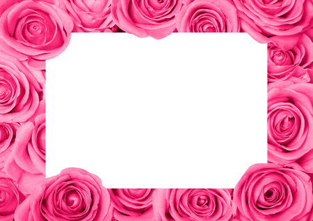 Background image of pink roses with copyspace