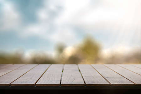 Empty wooden table with garden background