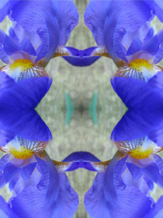 Iris kaleidoscope Imagens