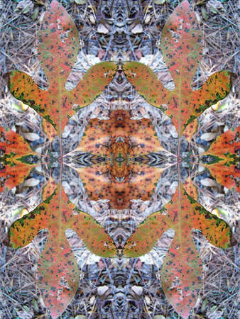 Fall leaves kaleidoscope