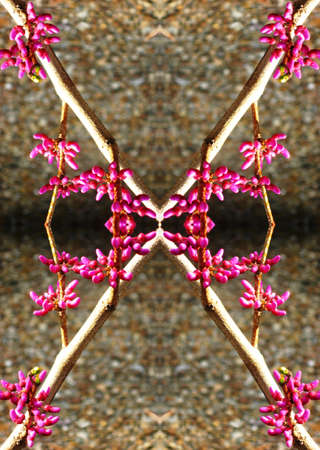 Pink buds kaleidoscope
