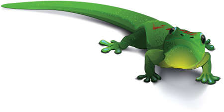 hes: A vector illustration of a happy gecko staring up at the viewer. It almost looks like hes smiling. Illustration