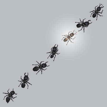 walking trail: A group or trail of worker ants  walking in forward momentum.   One ant in the center of the trail is glowing or illuminated.