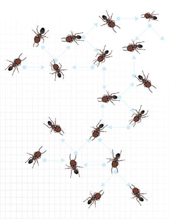 formicidae: A number of reddish hued worker ants depicted on graph paper.  The graph paper has light blue connector arrows with each ant adjacent to the various directional arrows. Illustration