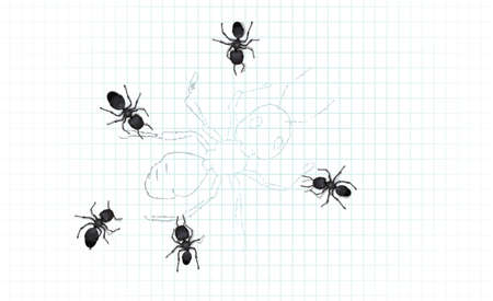 formicidae: A group of worker ants inspecting a drawing of a large worker ant.