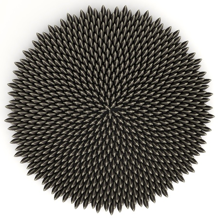 fibonacci: Sunflower seeds arranged according to golden angle by computer aided placement - accurate to 10 digits. There are 800 of them.