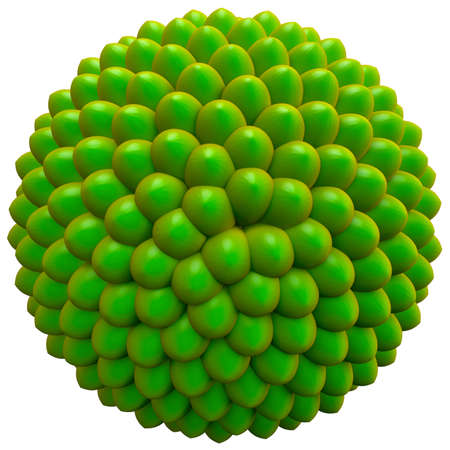 fibonacci: Basic seed cluster, no particular species. 3d render based on Fibonacci or golden ratio pattern.