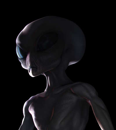 sighting: Grey alien night sighting, head and chest