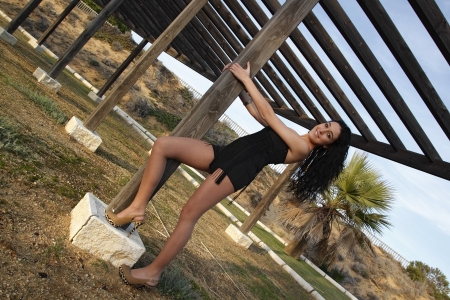 young brunette woman outdoors posing for the camera alone Stock Photo - 17009607