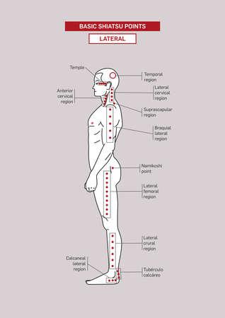 Basic Shiatsu acupressure Points. Male body. Vector Illustration