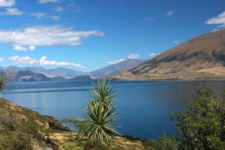 View of Lake Wanaka, New Zealand Zdjęcie Seryjne
