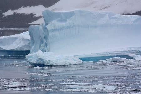 Icebergs In Danco Island Bay, Antarctica Reklamní fotografie