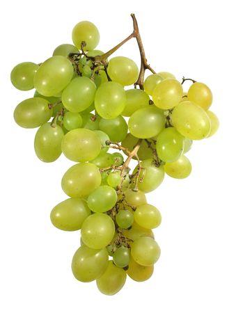 aligote: grape isolated on white, vector path!