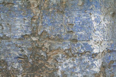 cementum: wall texture