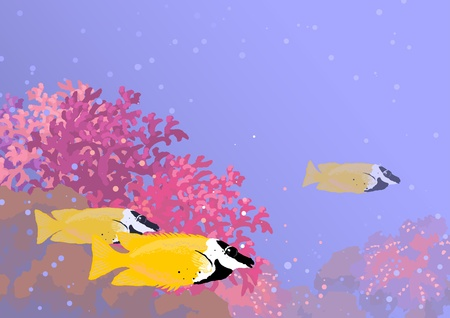 Three fishes called  Foxface Rabbitfish  among the thickets of coral underwater  Horizontal background of A4 size   Vector