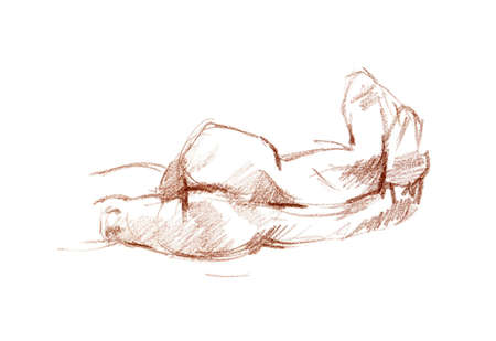 naked female body: Sanguine  red chalk  sketch of woman body on the white paper