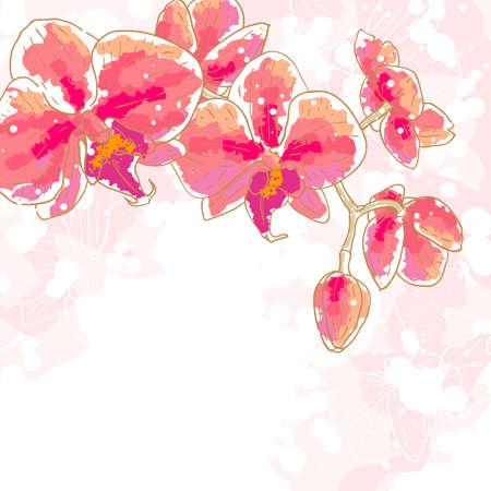 flowers background: La flor de las orqu�deas de dibujo de contorno se puede utilizar como fondo para tarjetas de invitaci�n