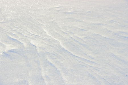 snowdrift: Photo texture of pure white snow with beautiful curved lines