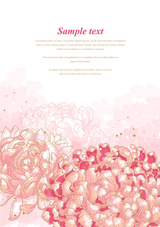 outline wedding: Romantic background with pink chrysanthemum on white background  Can be used as background for wedding invitation cards