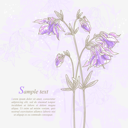 Romantic background with violet aquilegia  Watercolor style  Can be used as background for wedding invitation cards  Vector