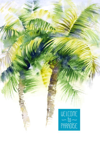 palmier: Vector design mod�le avec palmiers aquarelle
