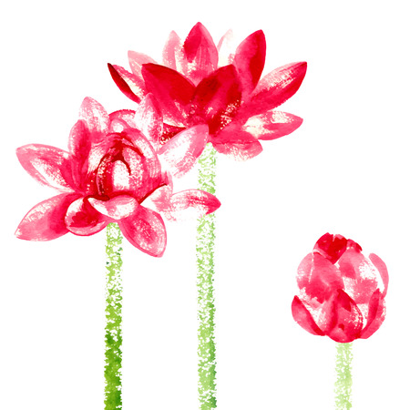 white lotus flower: Vector background with red watercolor lotus for wedding invitation or flyer