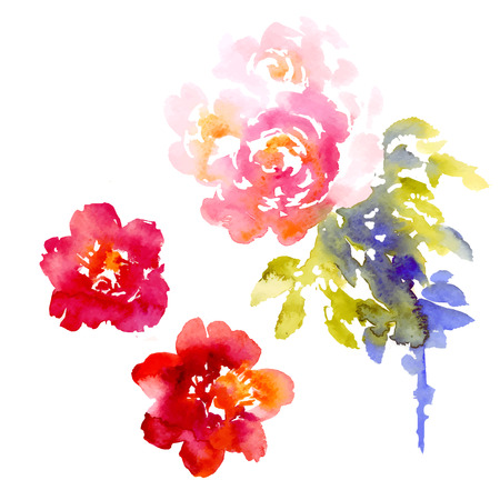 ranunculus: Vector background with pink watercolor bouquet for wedding invitation or flyer