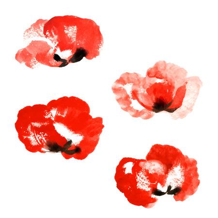 poppy flowers: Set of red watercolor poppy flowers