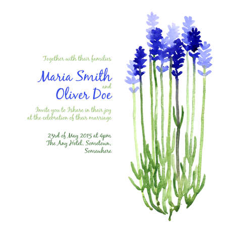Vector background with blue watercolor lavender for wedding invitation or flyer Illustration