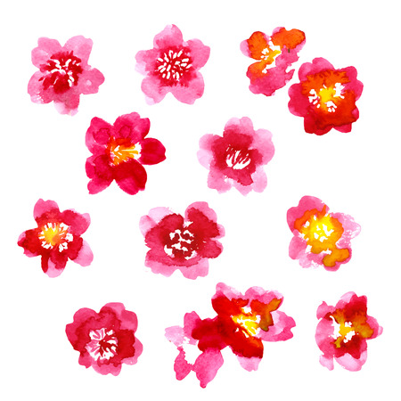 camellia: Set of red watercolor camellia flowers