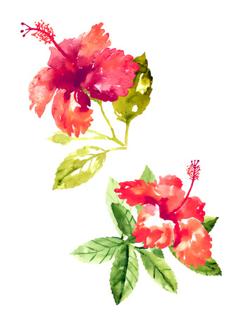 orange blossom: Set of red watercolor hibiscus flowers