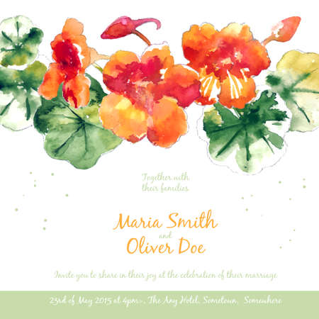 wedding invitation: Vector background with orange watercolor nasturtium for wedding invitation or flyer