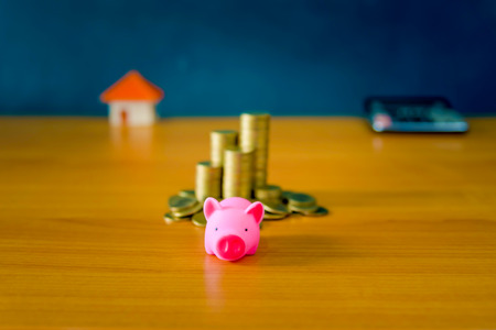 Money Saving Ideas for Homes, Financial and Financial Ideas, Saving Money in Preparing for the Future, Growing Up of Coins