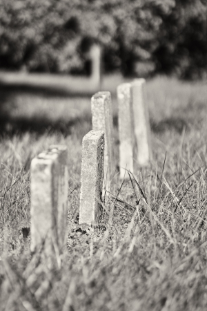 A Row of Unmarked Small Child Headstones Vertical - A Row of Unmarked Small Child Headstones in Black and White photo