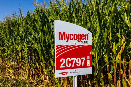 인디애나 폴리스 -2010 년 9 월 경 : Mycogen 씨앗 옥수수 필드에서 간판입니다. Mycogen 씨앗은 Dow AgroSciences 및 DowDuPont II의 자회사입니다. 스톡 콘텐츠 - 85669190