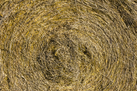 Abstract of hay bale for background or wallpaper III