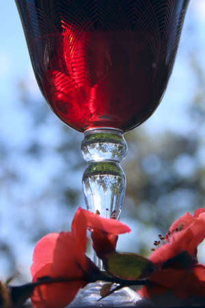 wineglasses with red wine photo