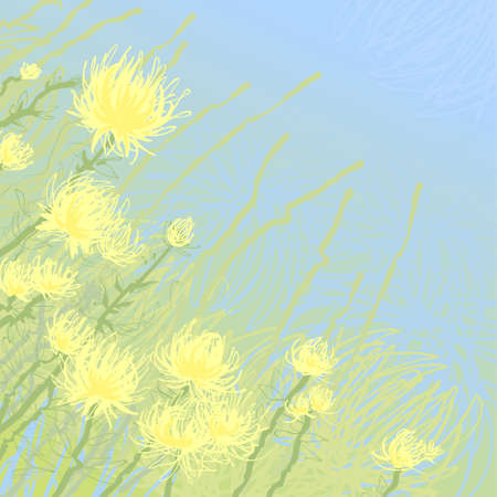 Yellow flowers, vector background illustration illustration