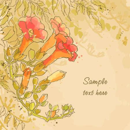 핑크색 종이에 tecoma 꽃과 질감 배경