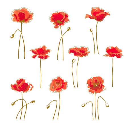 Set of 9 hand-drawn poppy flower, isolated on white background Illustration