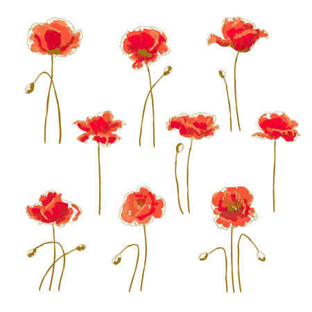 Set of 9 hand-drawn poppy flower, isolated on white background Illustration