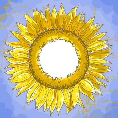 The contour drawing flower sunflower against a blue background. Can be used as background for invitation cards. Vector