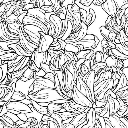 흰색에 고립 된 손으로 그린 국화 꽃과 원활한 꽃 검은 색과 흰색 트레이 서리 패턴