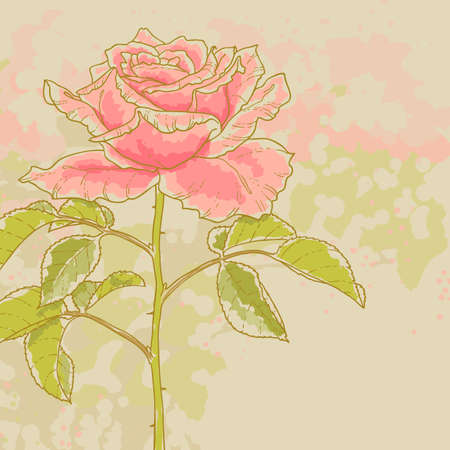 The contour drawing pink rose with leaves on toned background  Watercolor style  Can be used as background for invitation cards  Vector