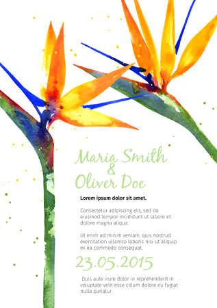 결혼식 초대 또는 우대를위한 수채화 Strelitzia 벡터 배경