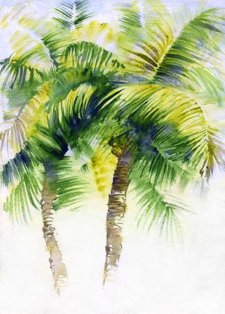 Watercolor painting with tropical palm trees, painted in India