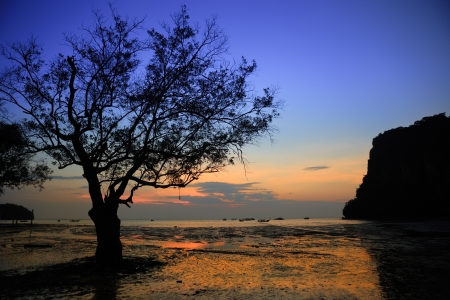 railay: sunrise at East Railay Beach