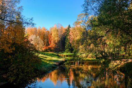 Beautiful autumn sunny landscape in Pavlovsk park with the park pond, red and orange leaves on trees. Pavlovsk, St. Petersburg.