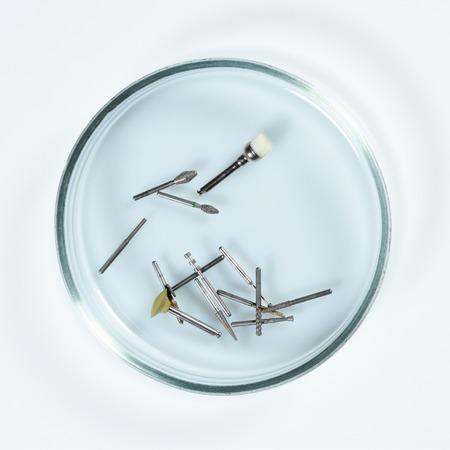 Endodontic tools: Used dental borers in Petri dish glass close-up. Stock Photo